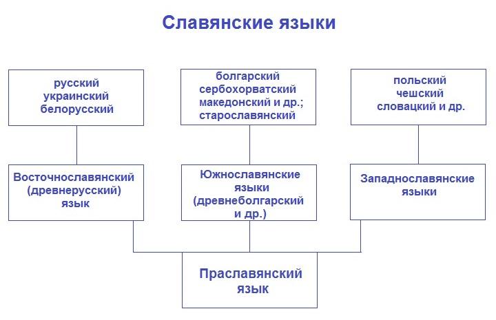 Праславянский, старославянский, древнерусский: как не запутаться в языках и терминах