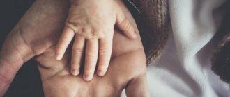 руки людей, взрослого и ребенка