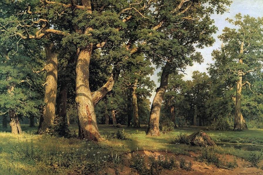 """И. И. Шишкин """"Дубовая роща"""" (1887)"""
