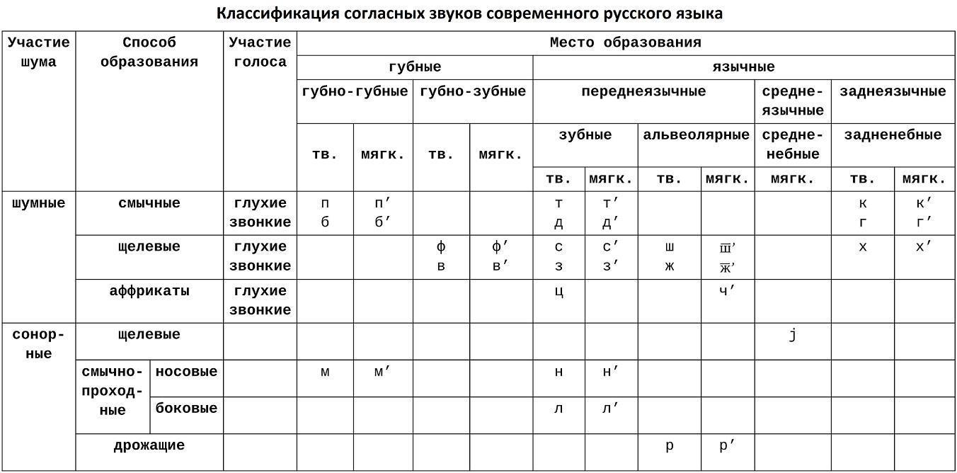 Согласные звуки современного русского языка